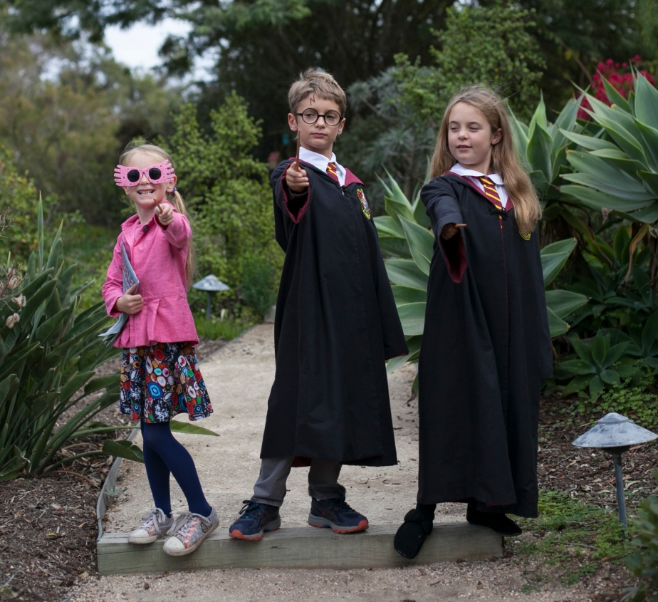 kids_harry_potter_family__halloween_costumes
